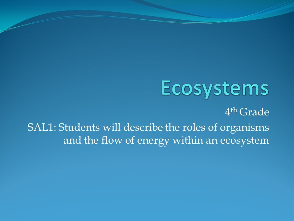4 th Grade SAL1: Students will describe the roles of organisms and the flow of energy within an ecosystem