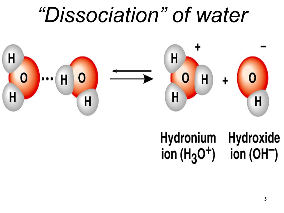 1 water molecule in 550 million naturally dissociates into a Hydrogen Ion and a Hydroxide Ion1 water molecule in 550 million naturally dissociates into a Hydrogen Ion and a Hydroxide Ion Hydrogen Ion Hydroxide Ion Acid Base Acid Base H 2 O  H + + OH - copyright cmassengale