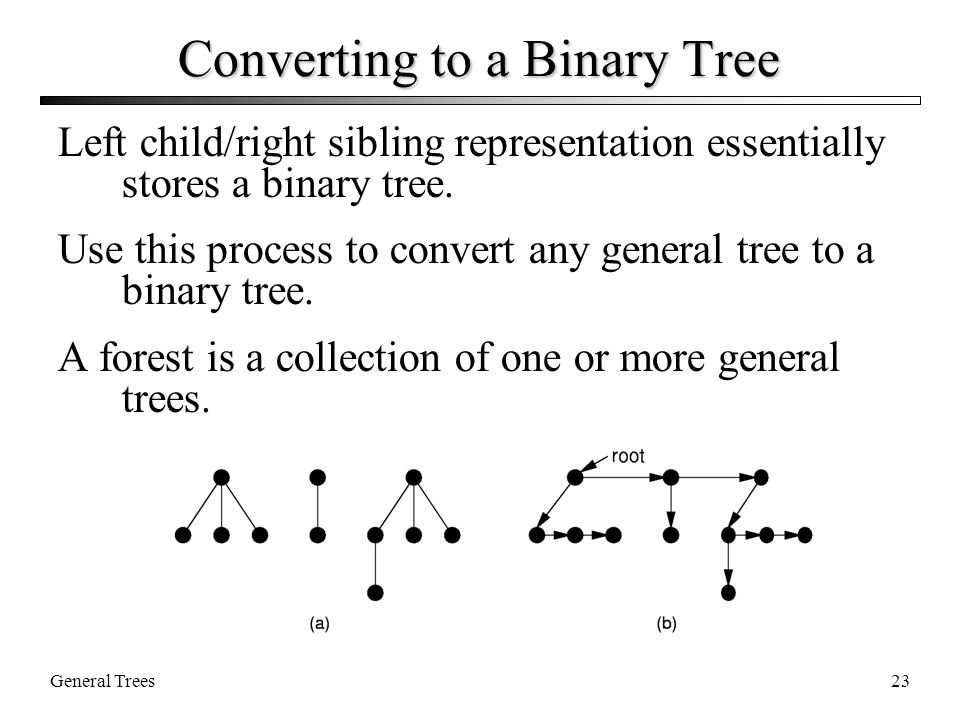 General Trees23 Converting to a Binary Tree Left child/right sibling representation essentially stores a binary tree.