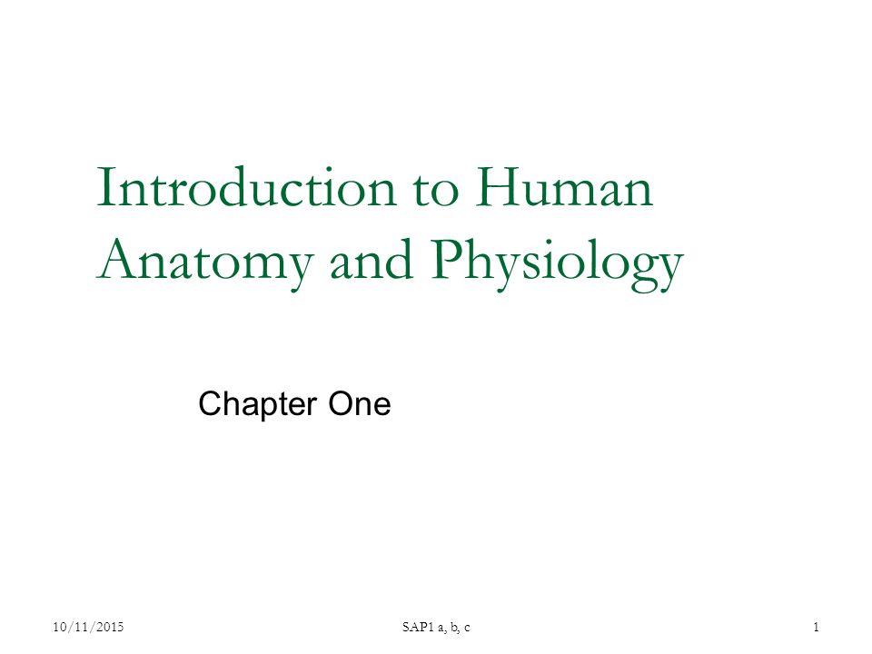Introduction to Human Anatomy and Physiology Chapter One 10/11/2015SAP1 a, b, c1