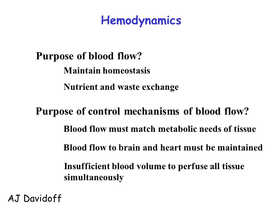 what is the purpose of homeostasis