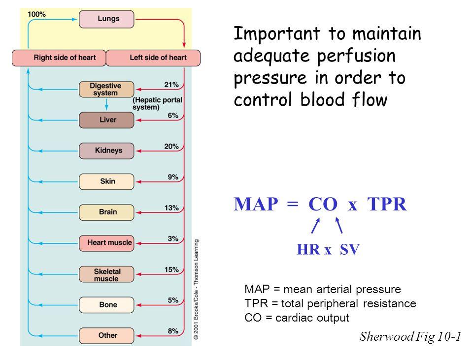 Hemodynamics Purpose of control mechanisms of blood flow ... on sd map, la map, mn map, ca map, sc map, mc map, ut map, az map, mo map, no map, or map, cu map, pm2.5 map, de map, colorado map, fl map, nc map, ihb map, un map,