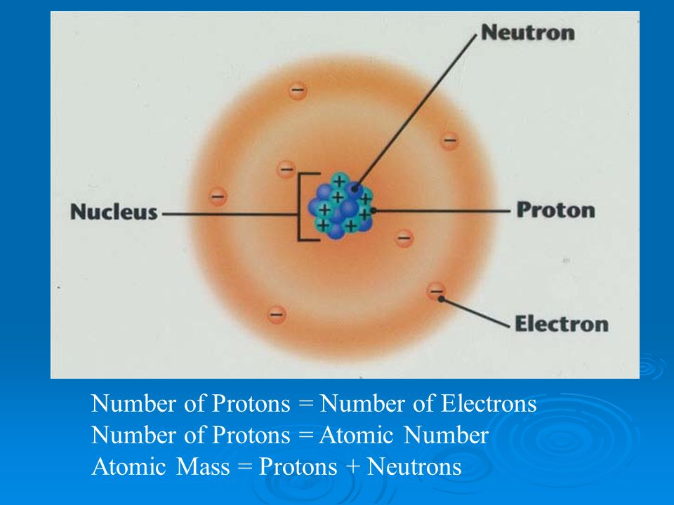 Number of Protons = Number of Electrons Number of Protons = Atomic Number Atomic Mass = Protons + Neutrons