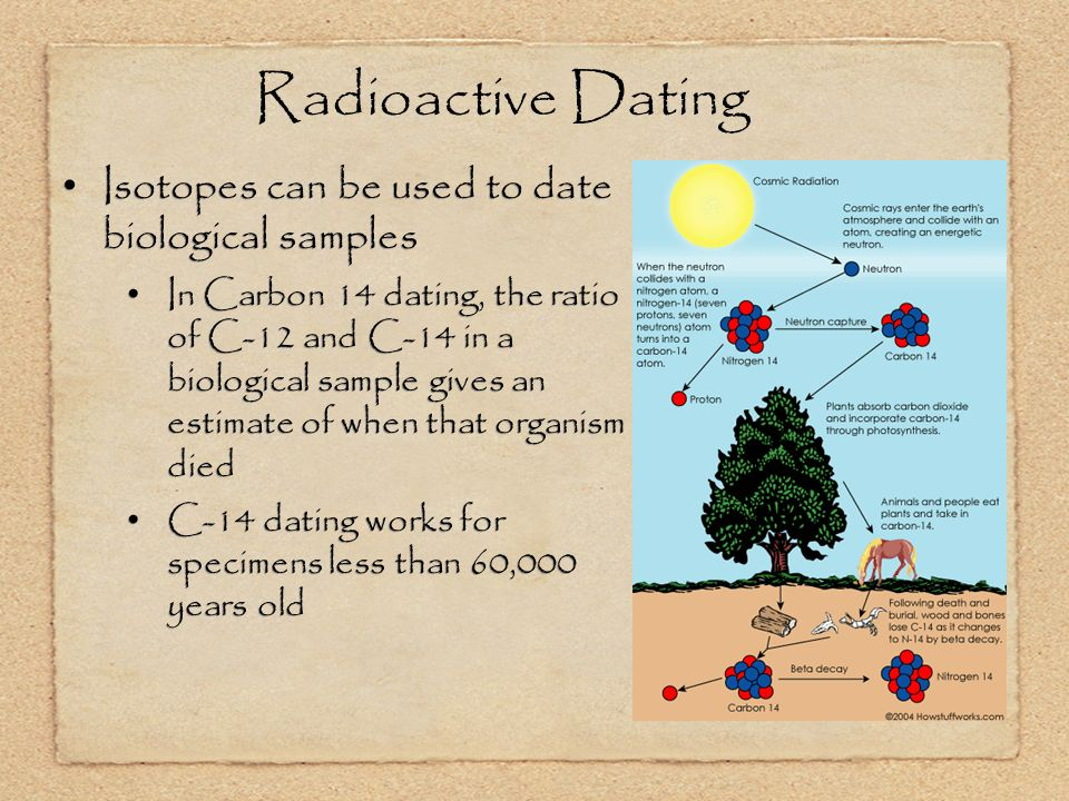 Radioactive Dating Isotopes can be used to date biological samples In Carbon 14 dating, the ratio of C-12 and C-14 in a biological sample gives an estimate of when that organism died C-14 dating works for specimens less than 60,000 years old Isotopes can be used to date biological samples In Carbon 14 dating, the ratio of C-12 and C-14 in a biological sample gives an estimate of when that organism died C-14 dating works for specimens less than 60,000 years old