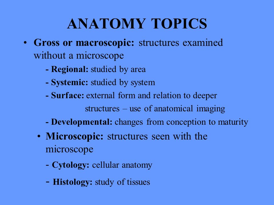 Human Anatomy Lecture One Body Overview Anatomy Topics Gross Or