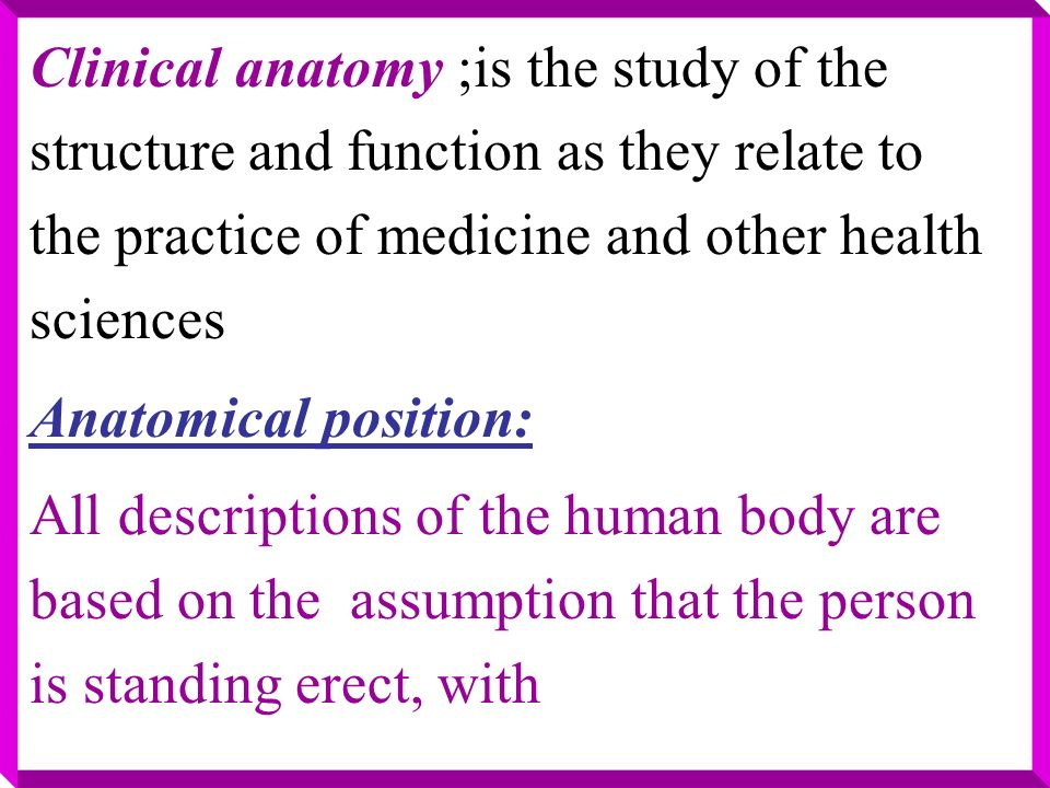 Essentials Of The Human Anatomy By Phdsayed Aly Mahran Ppt