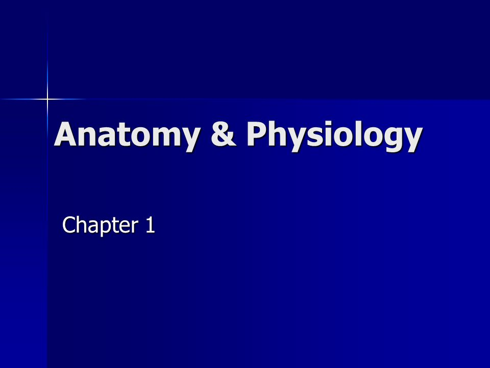 Anatomy Physiology Chapter 1 A P Anatomy Study Of Structure