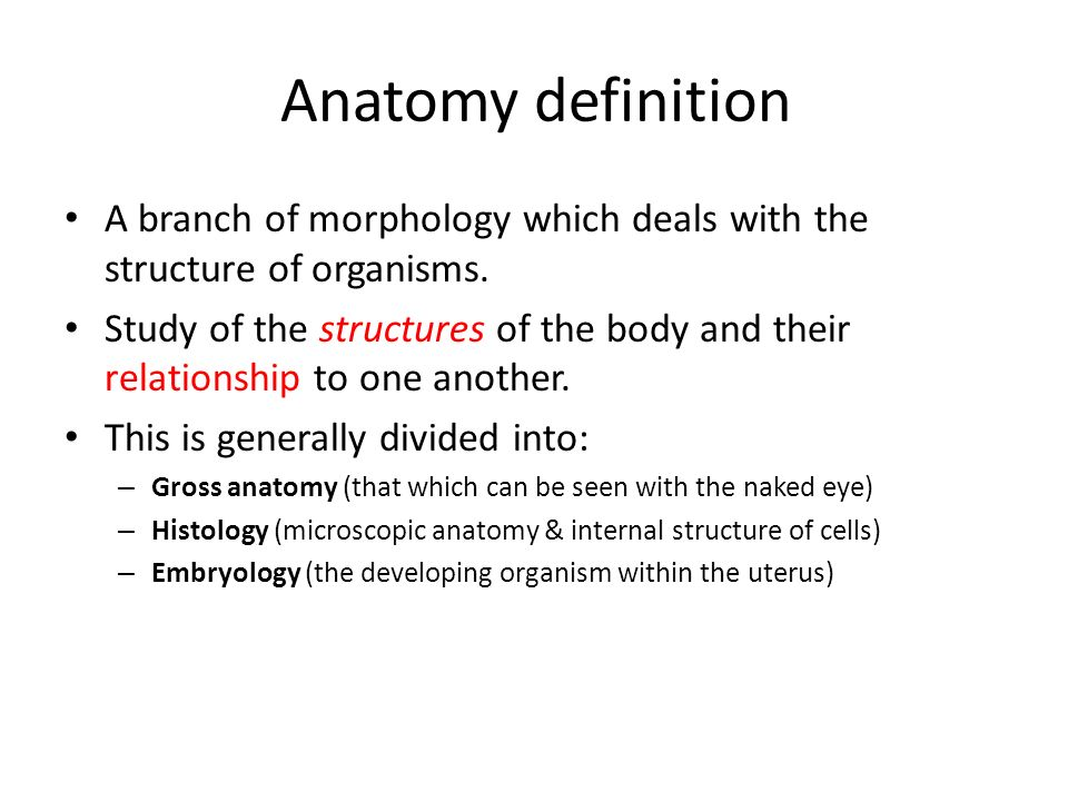 "Introduction Anatomy Azami PHD. Definition Anatomy- From Greek ""to ..."