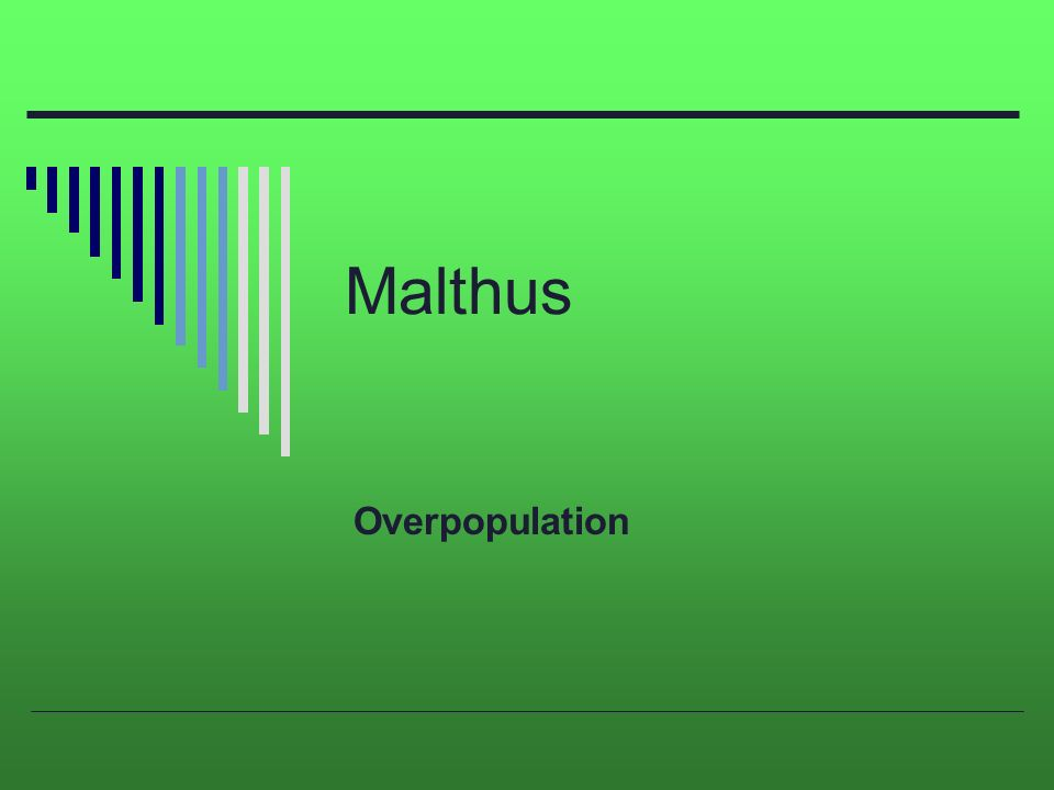Malthus Overpopulation Malthus  Thomas Malthus English Economist   Malthus Overpopulation Business Essays also How To Write A Thesis For A Persuasive Essay  College Essay Paper