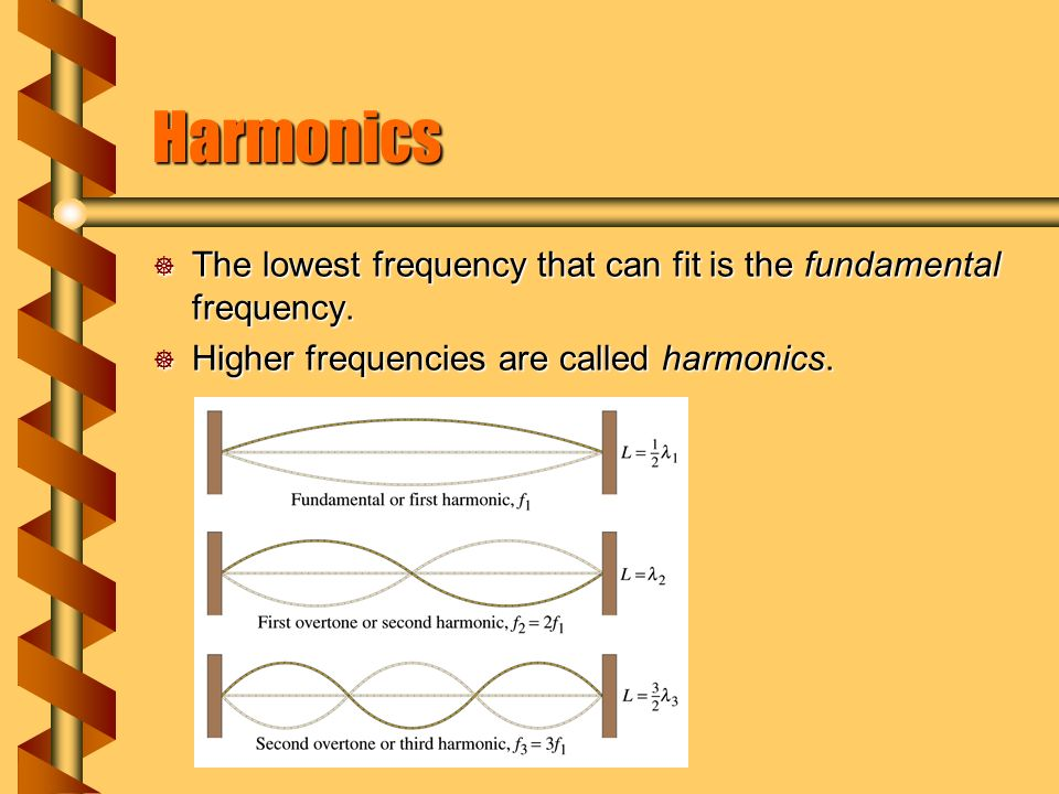 Harmonics  The lowest frequency that can fit is the fundamental frequency.