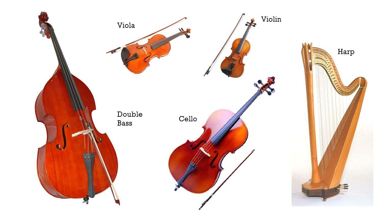 String Instruments Double Bass Cello Viola Violin Harp