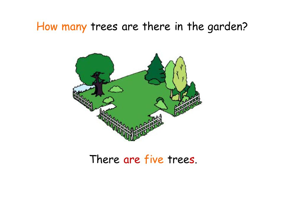 How many trees are there in the garden There are five trees.