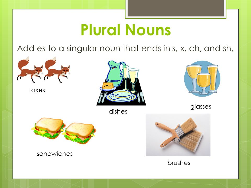 Plural Nouns Add es to a singular noun that ends in s, x, ch, and sh, foxes dishes glasses sandwiches brushes
