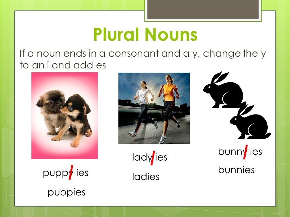 Plural Nouns If a noun ends in a consonant and a y, change the y to an i and add es puppy ies puppies lady ies ladies bunny ies bunnies