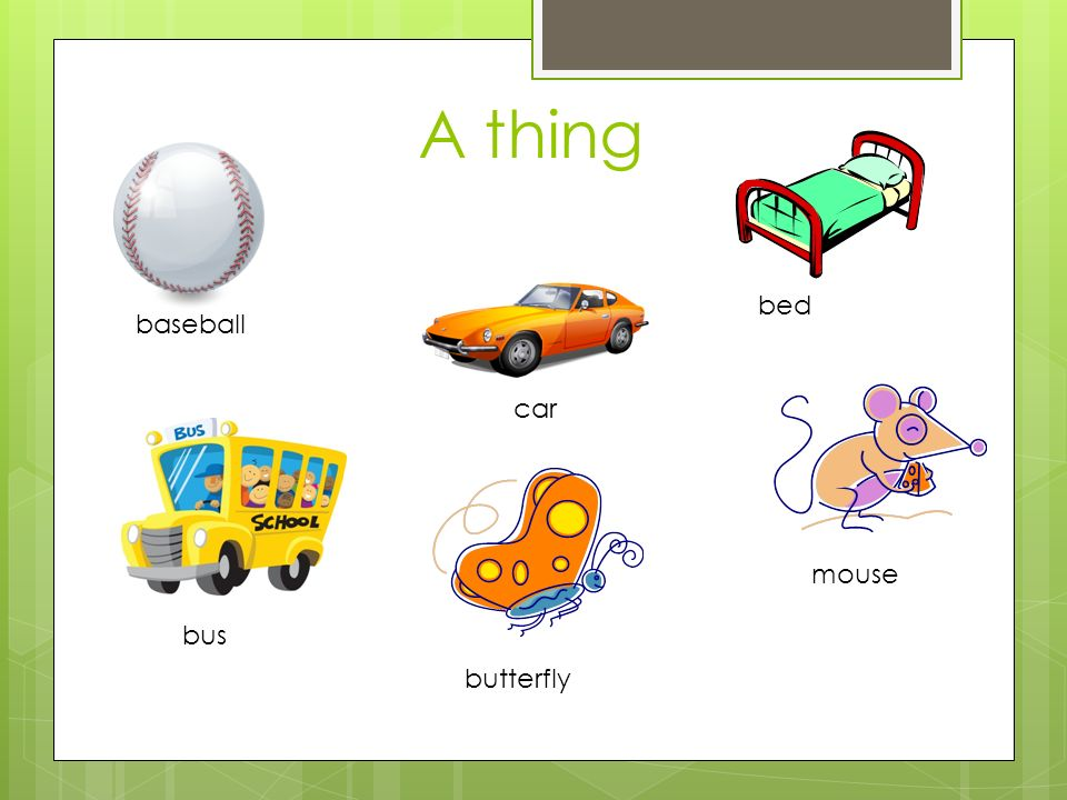 A thing baseball bed bus car mouse butterfly