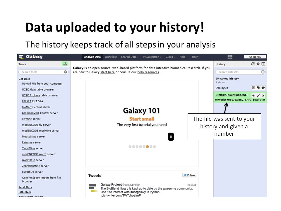 Data uploaded to your history.