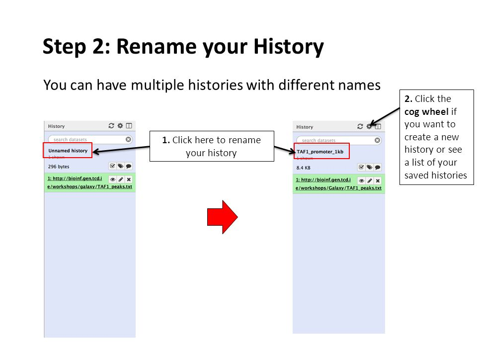Step 2: Rename your History 1.