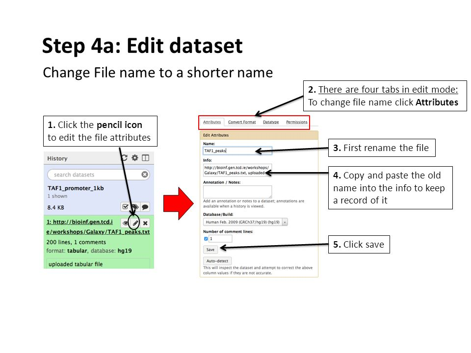 Step 4a: Edit dataset 1. Click the pencil icon to edit the file attributes 3.