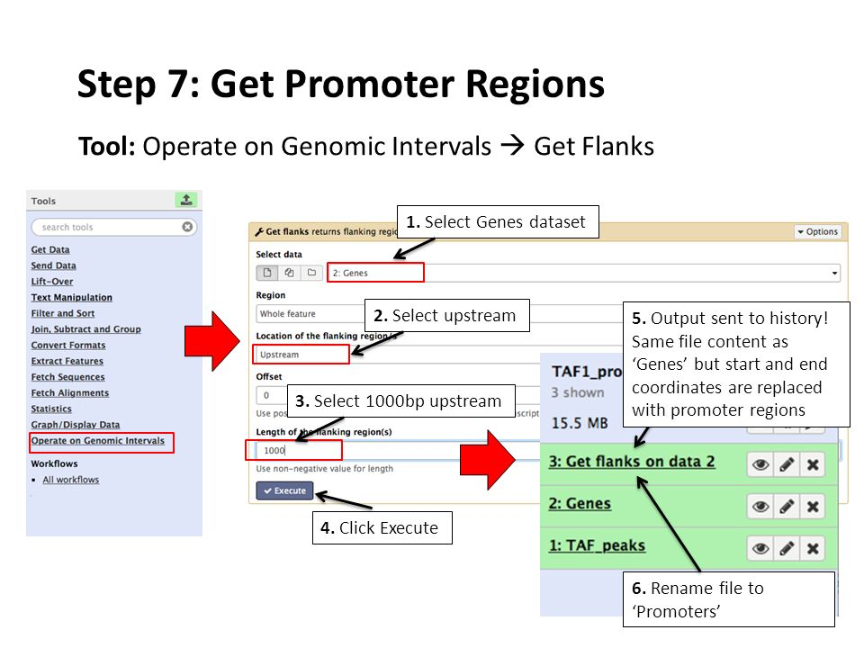 Step 7: Get Promoter Regions Tool: Operate on Genomic Intervals  Get Flanks 4.