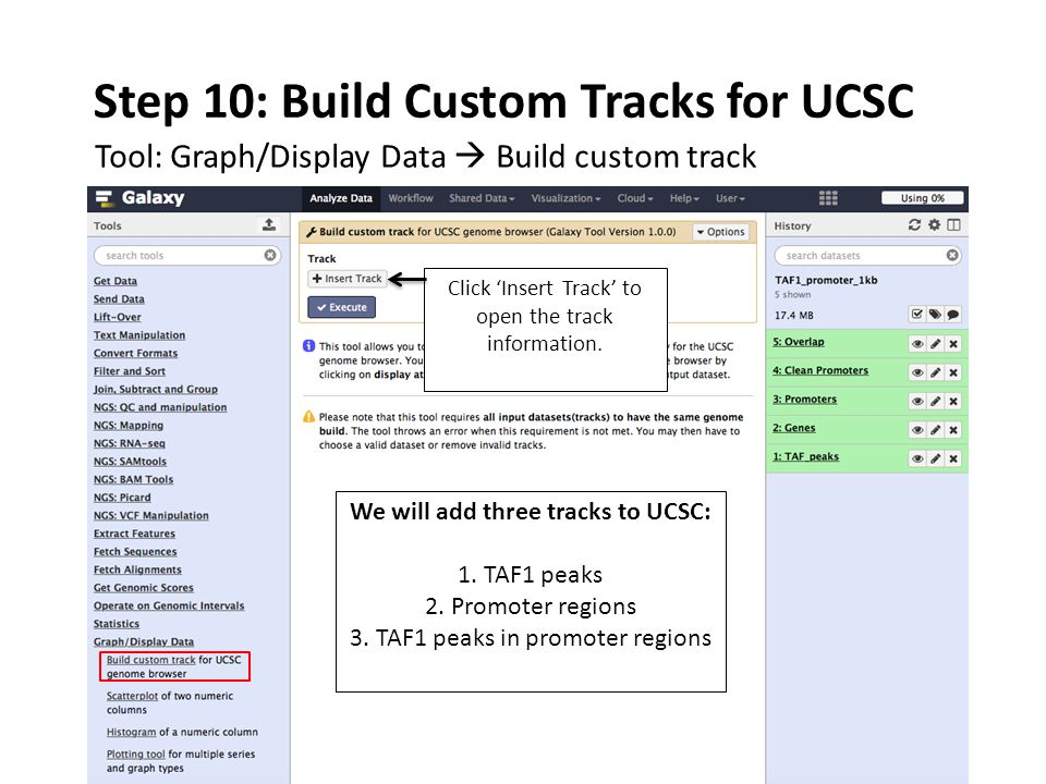 Step 10: Build Custom Tracks for UCSC Tool: Graph/Display Data  Build custom track Click 'Insert Track' to open the track information.