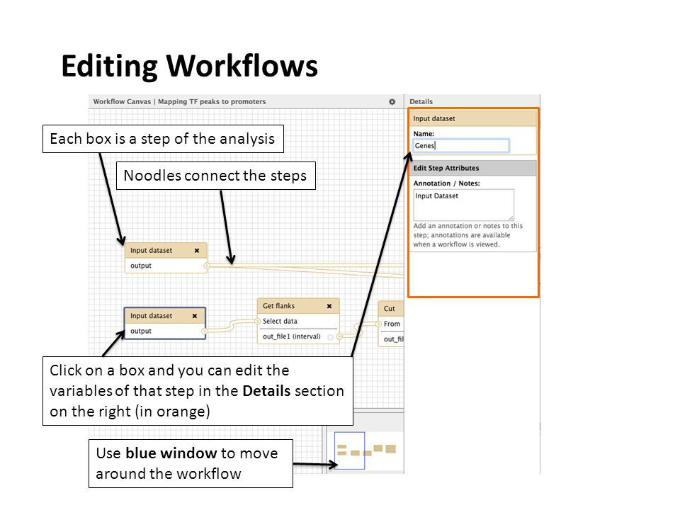Editing Workflows Click on a box and you can edit the variables of that step in the Details section on the right (in orange) Each box is a step of the analysis Noodles connect the steps Use blue window to move around the workflow