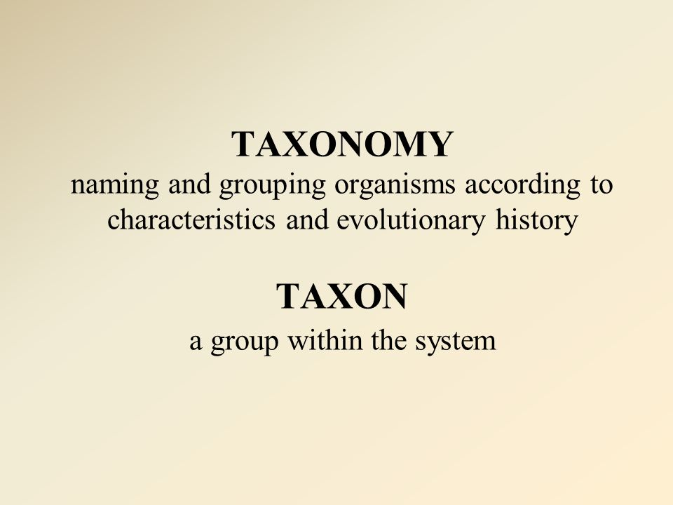TAXONOMY naming and grouping organisms according to characteristics and evolutionary history TAXON a group within the system