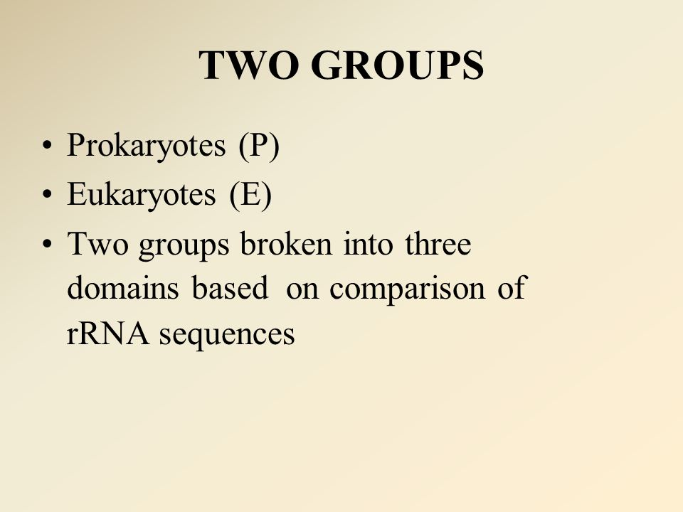 TWO GROUPS Prokaryotes (P) Eukaryotes (E) Two groups broken into three domains based on comparison of rRNA sequences