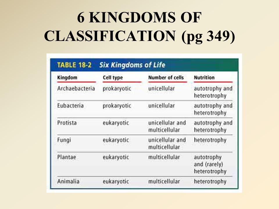 6 KINGDOMS OF CLASSIFICATION (pg 349)