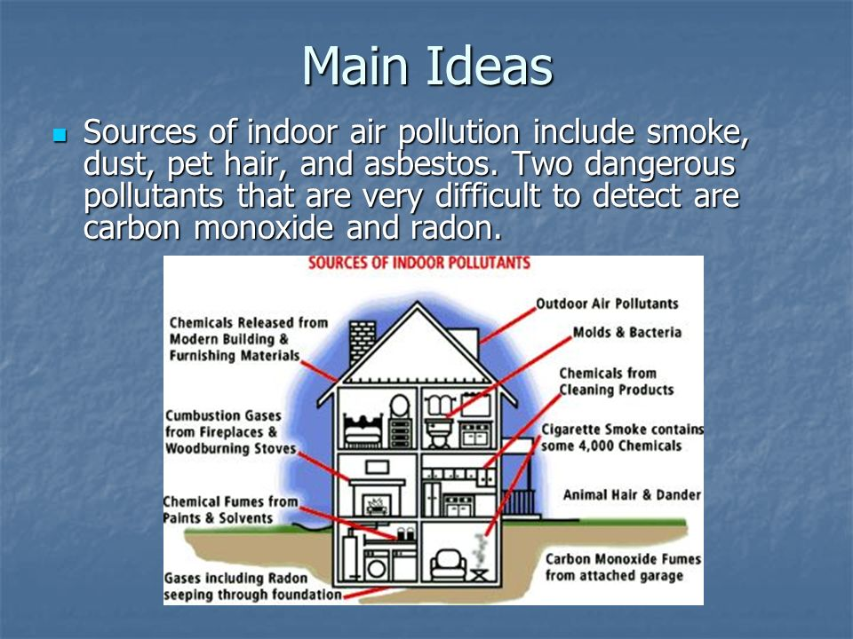 Main Ideas Sources of indoor air pollution include smoke, dust, pet hair, and asbestos.