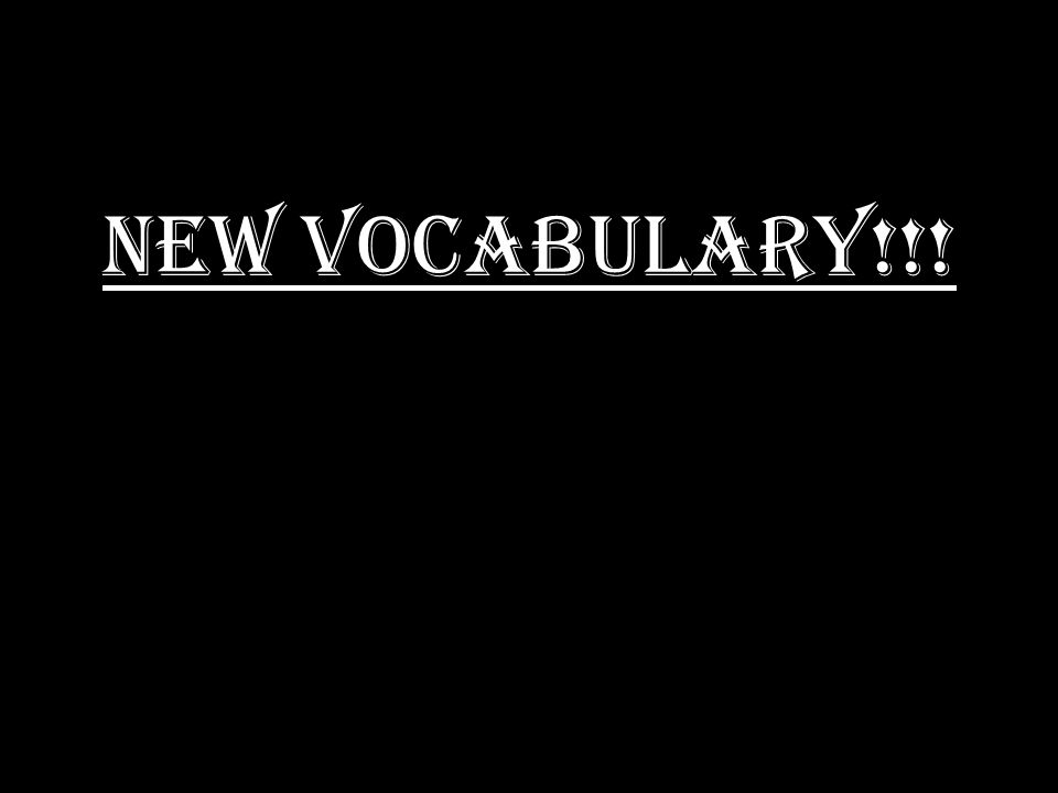 NEW VOCABULARY!!!
