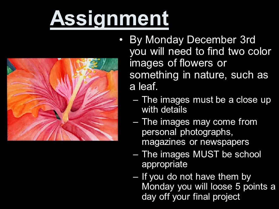 Assignment By Monday December 3rd you will need to find two color images of flowers or something in nature, such as a leaf.