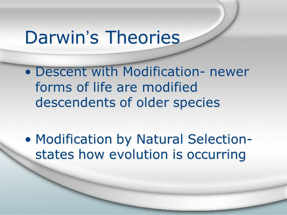 Darwin's Theories Descent with Modification- newer forms of life are modified descendents of older species Modification by Natural Selection- states how evolution is occurring Descent with Modification- newer forms of life are modified descendents of older species Modification by Natural Selection- states how evolution is occurring