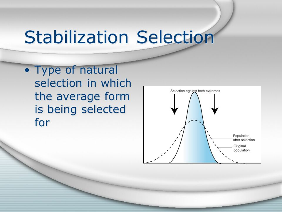 Stabilization Selection Type of natural selection in which the average form is being selected for