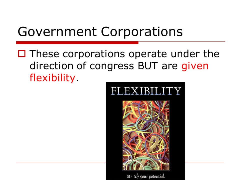 Government Corporations  These corporations operate under the direction of congress BUT are given flexibility.