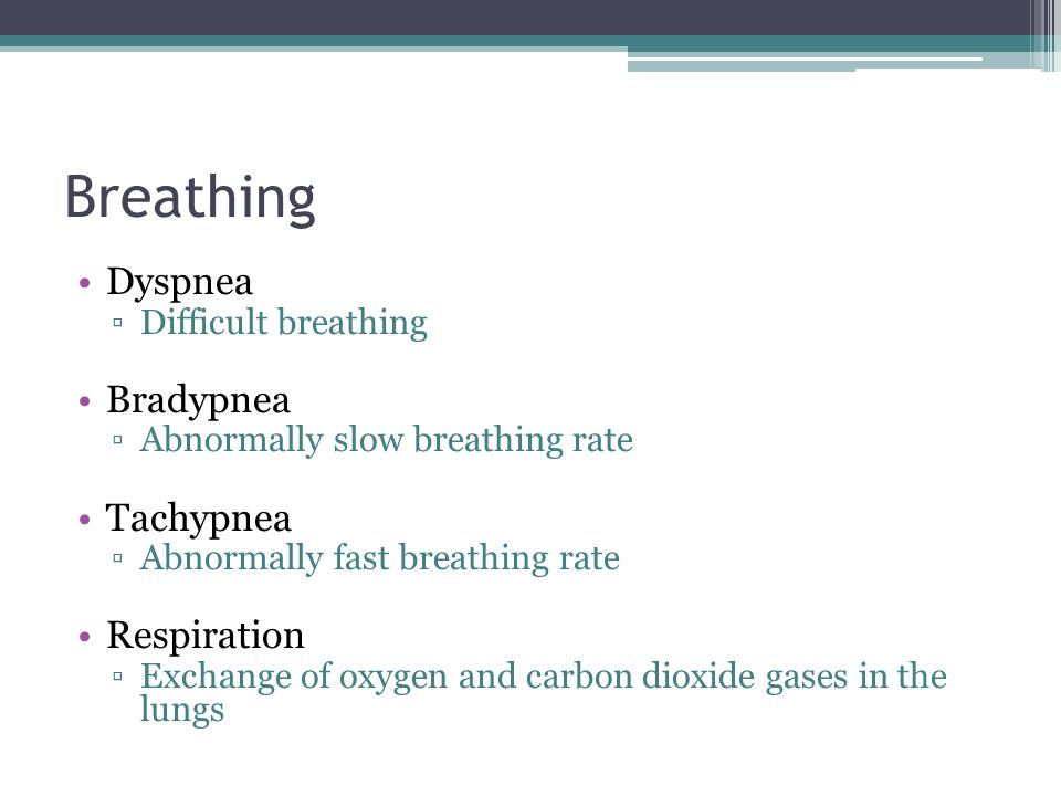 Breathing Inhalation ▫Drawing in of a breath Exhalation ▫Release of a breath Apnea ▫Not breathing