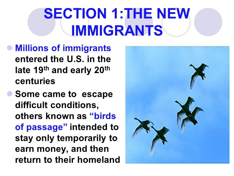 SECTION 1:THE NEW IMMIGRANTS Millions of immigrants entered the U.S.