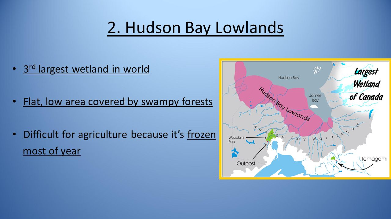 Interesting Facts About Hudson Bay 73