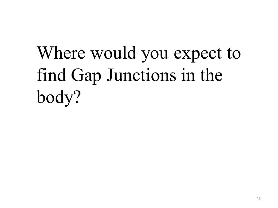10 Where would you expect to find Gap Junctions in the body