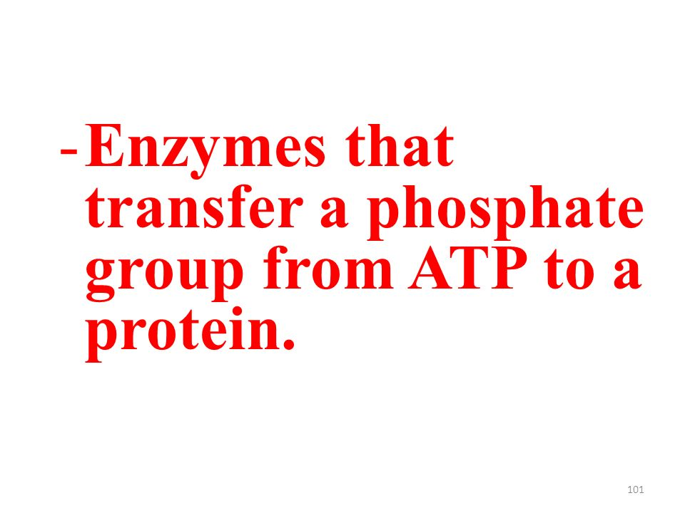 101 -Enzymes that transfer a phosphate group from ATP to a protein.