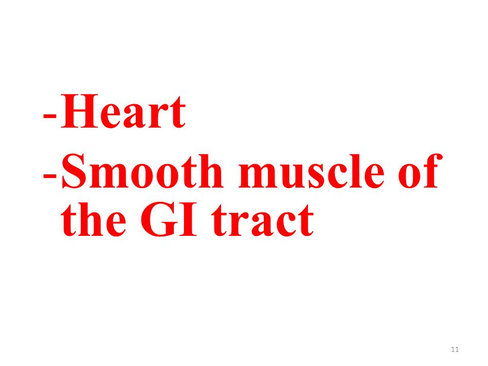 11 -Heart -Smooth muscle of the GI tract