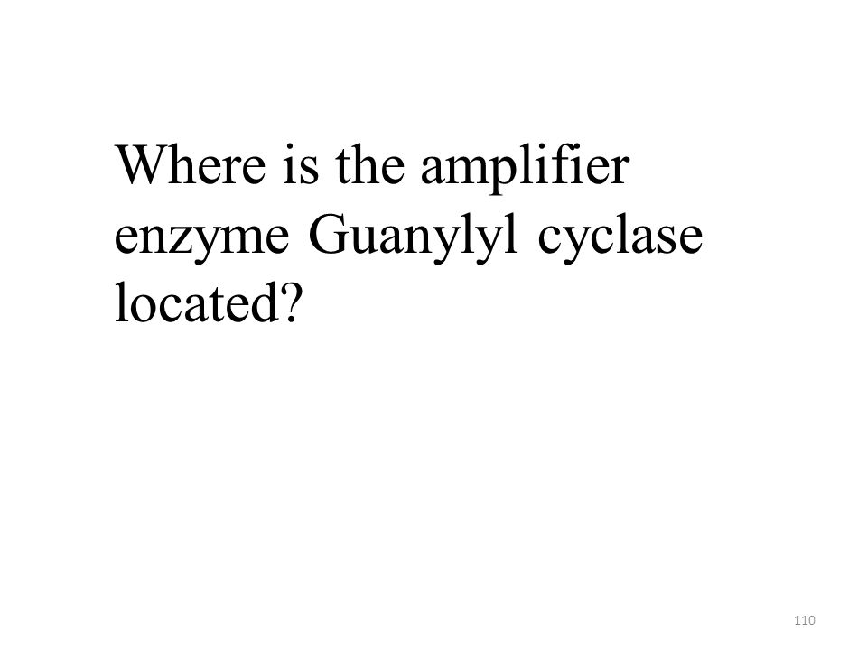 110 Where is the amplifier enzyme Guanylyl cyclase located