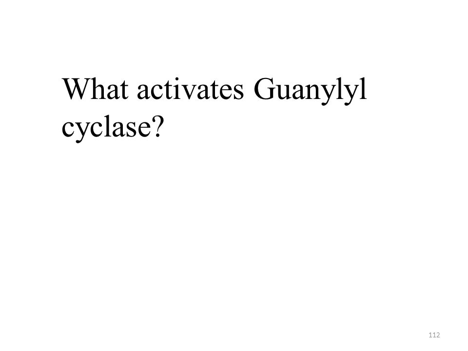 112 What activates Guanylyl cyclase