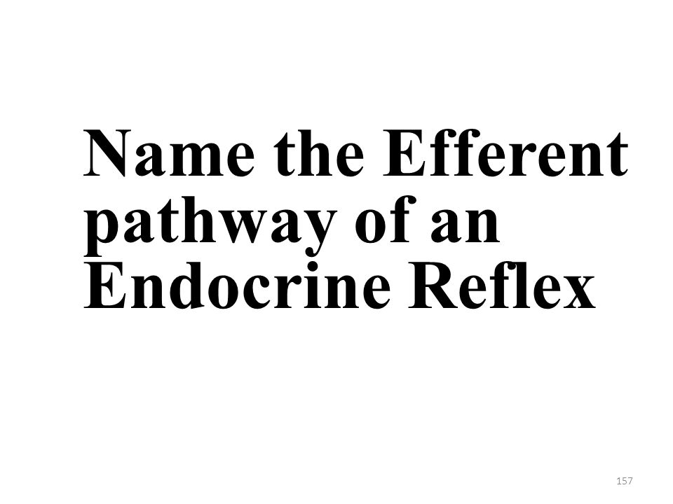 157 Name the Efferent pathway of an Endocrine Reflex