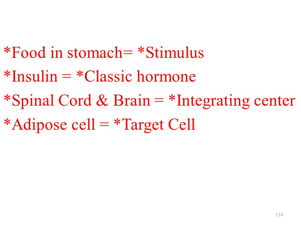 174 *Food in stomach= *Stimulus *Insulin = *Classic hormone *Spinal Cord & Brain = *Integrating center *Adipose cell = *Target Cell