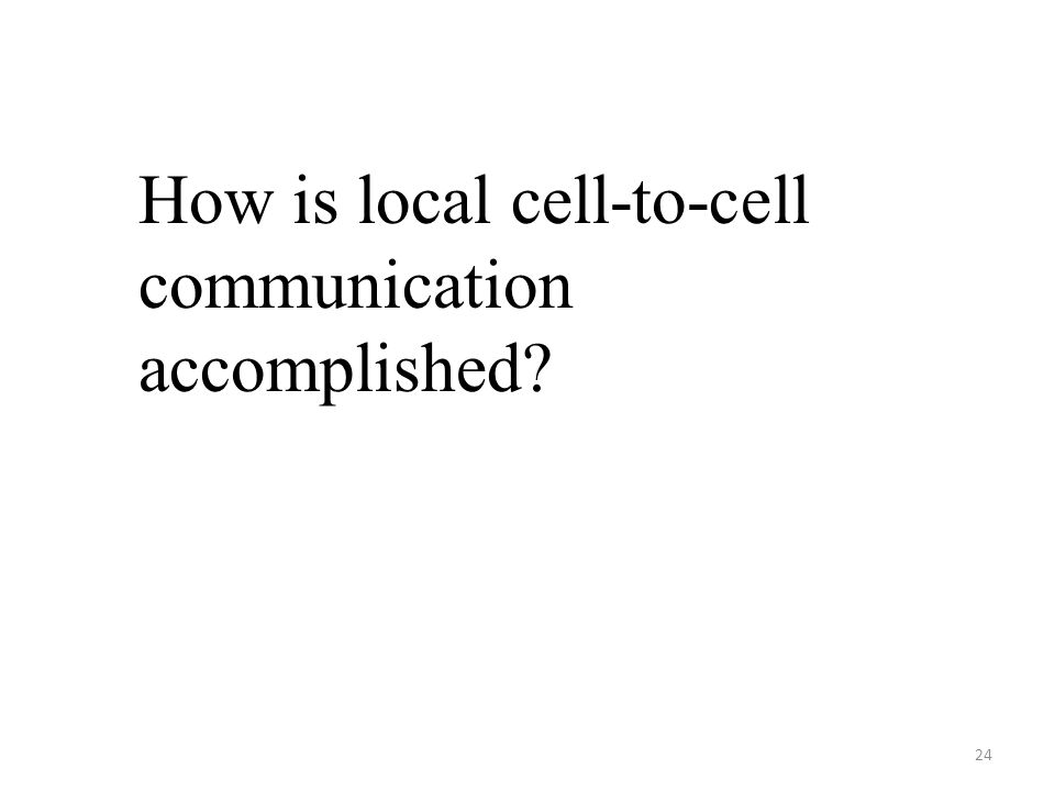 24 How is local cell-to-cell communication accomplished