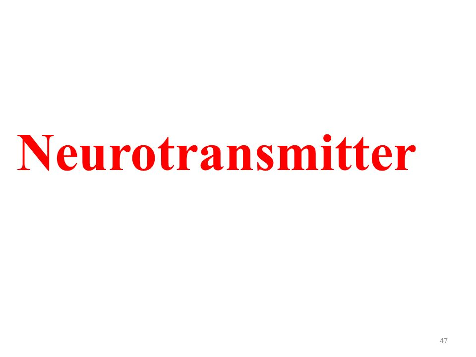 47 Neurotransmitter