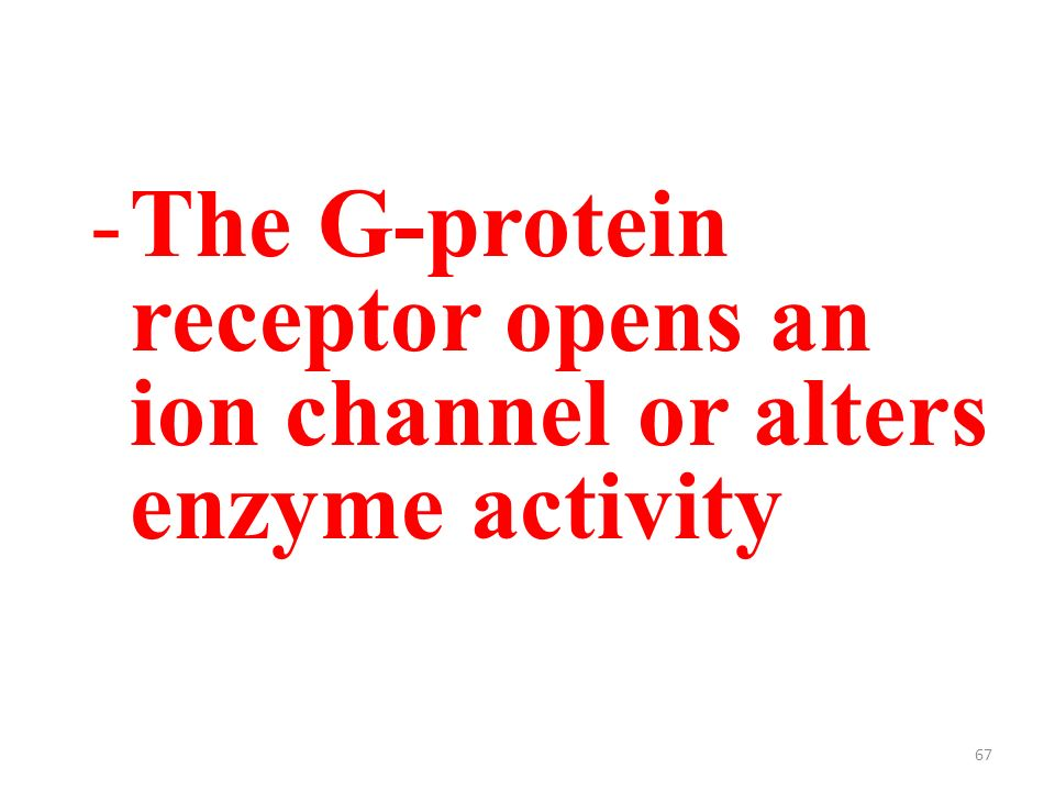 67 -The G-protein receptor opens an ion channel or alters enzyme activity