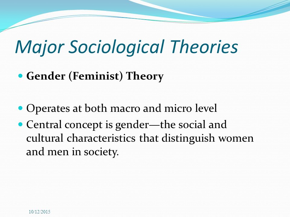macro and micro sociological theories