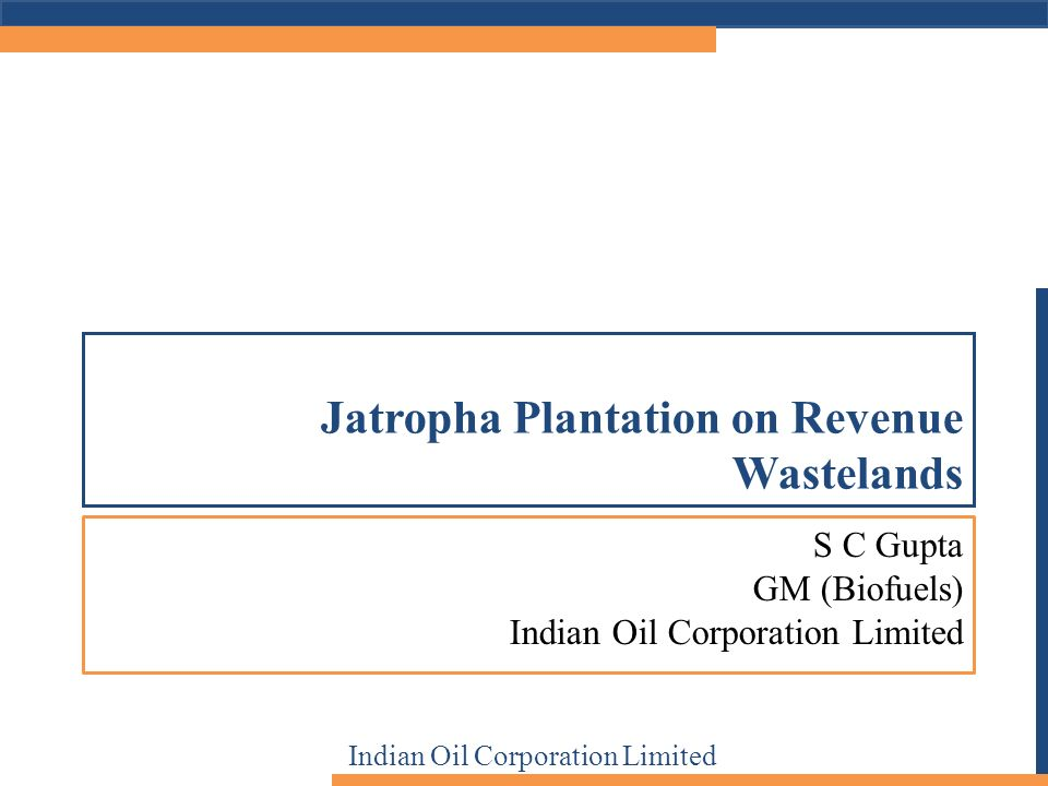 S C Gupta GM (Biofuels) Indian Oil Corporation Limited