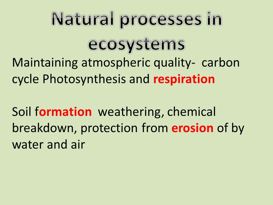 Maintaining atmospheric quality- carbon cycle Photosynthesis and respiration Soil formation weathering, chemical breakdown, protection from erosion of by water and air